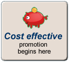 Online product promotion